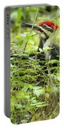Male Pileated Woodpecker On The Ground No. 2 Portable Battery Charger