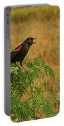 Male Red-winged Blackbird Singing Portable Battery Charger