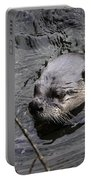 Male River Otter Portable Battery Charger