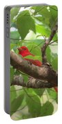 Male Summer Tanager Portable Battery Charger
