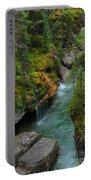 Maligne Canyon Falls Jasper National Park Portable Battery Charger