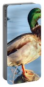 Mallard Portable Battery Charger