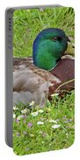 Mallard Drake In The Grass Portable Battery Charger
