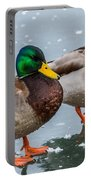 Mallards On Ice Portable Battery Charger