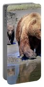 Mama Bear Leads The Way Portable Battery Charger
