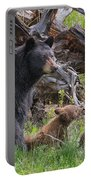 Mama Black Bear With Cinnamon Cubs Portable Battery Charger