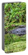 Mama Gator With Babies Portable Battery Charger