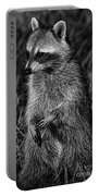 Mama Raccoon Portable Battery Charger