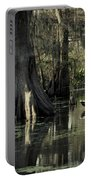 Man Fishing In Cypress Swamp Portable Battery Charger
