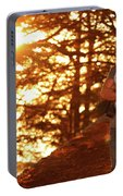 Man In The Forest Portable Battery Charger