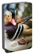 Mandarin Duck Raising One Foot. Portable Battery Charger