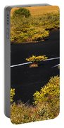 Mangrove River Panoramic Portable Battery Charger