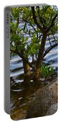 Mangroves And Coquina Portable Battery Charger