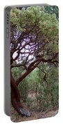 Manzanita Tree By The Road Portable Battery Charger