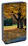 Maple And Arborvitae Portable Battery Charger
