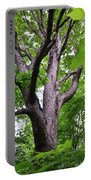 Maple Branches Portable Battery Charger
