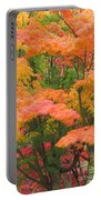 Maple Magic Portable Battery Charger