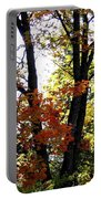 Maple Mania 16 Portable Battery Charger