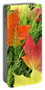 Maple Mania 5 Portable Battery Charger