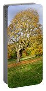 Maple Tree On The Slope. Portable Battery Charger