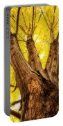 Maple Tree Portrait 2 Portable Battery Charger