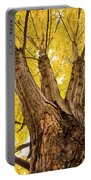 Maple Tree Portrait Portable Battery Charger