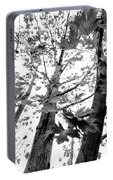 Maple Trees In Black And White Portable Battery Charger