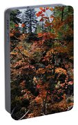 Maple Vine In Fall Season Portable Battery Charger