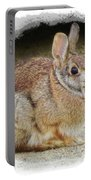 March Rabbit With Vignette Portable Battery Charger