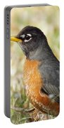 March Robin Portable Battery Charger
