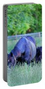 Mare And Foal In Shadows Portable Battery Charger