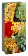 Marine Life, Close-up Portable Battery Charger