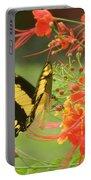 Mariposa Amazonica Portable Battery Charger
