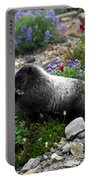 Marmot Feeding Portable Battery Charger