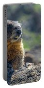 Marmot On The Ridge Portable Battery Charger