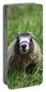 Marmot Pup Portable Battery Charger