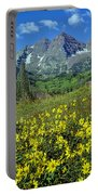 210403-v-maroon Bells And Sunflowers  Portable Battery Charger