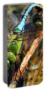 Married With Children Dragonflies Mating Portable Battery Charger