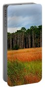 Marsh And Trees Portable Battery Charger
