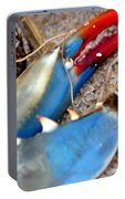 Maryland Blue Claw Portable Battery Charger