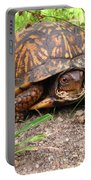 Maryland Box Turtle Portable Battery Charger