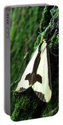 Maryland Clymene Moth Portable Battery Charger