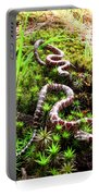Maryland Milk Snakes Verticle Portable Battery Charger