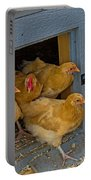 Aunt Mary's Chickens Portable Battery Charger