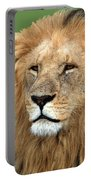 Masai Mara Lion Portrait    Portable Battery Charger by Aidan Moran