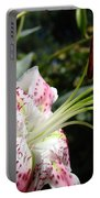 Master Gardeners Art Floral Pink Lily Flower Baslee Troutman Portable Battery Charger