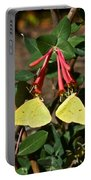 Matched Pair Of Sulfur Butterflies Portable Battery Charger
