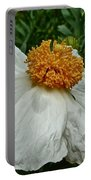Matilija Poppy Four Portable Battery Charger