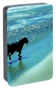 Maxwell On The Beach Portable Battery Charger