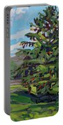 Mcmichael Spruce Portable Battery Charger